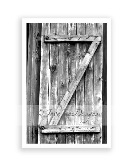Letter Z - Alphabet Photography Individual by JavaJaneDesigns on