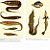 Fish and Eels from Seba's Cabinet of Natural Curiosities Poster Lithographs, Pl