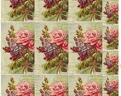 Item collection 2703555 original