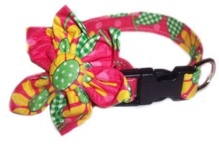 Crazy Dasies Blossom Flower Bow dog cat puppy pet collar