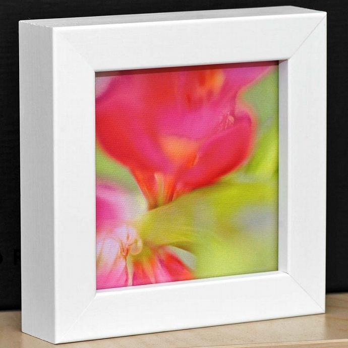 Eco Friendly White Framed Flower Print