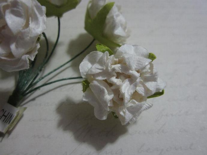 8 - White Peony Mulberry Flowers
