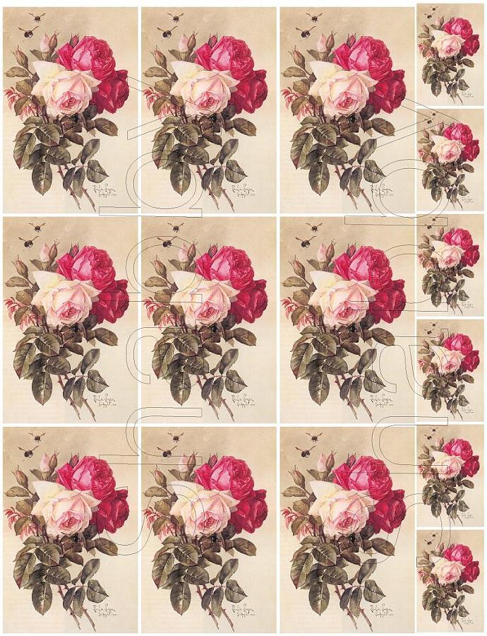 Shabby chic  ROSES  digital collage sheets for scrapbook and cards Journal Spot