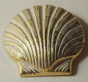 Vintage -  Seashell or Shell Pin