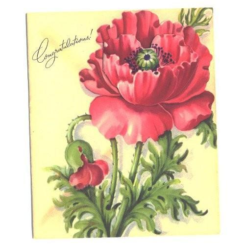 Vintage Greeting Card 1950s CONGRATULATIONS Pink Flower