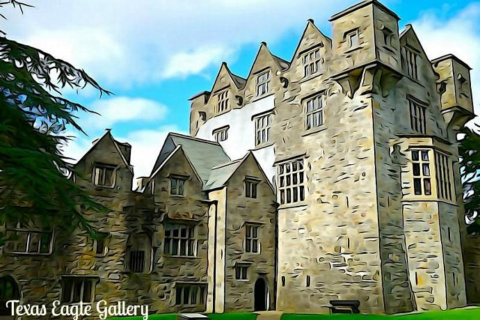 Donegal Castle fine art print
