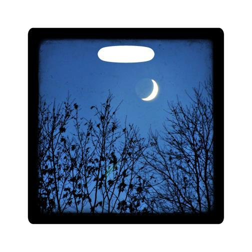 Luggage Tag - By the Light of the Moon Photo - 3.5 Inch Square Plastic Bag ID