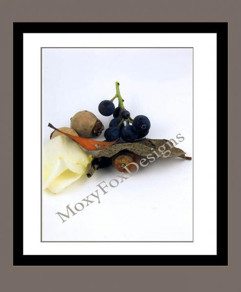 Card -- WINTER STILL LIFE Photographic Greeting Card 5 x 7 Inches with and