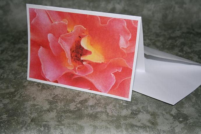 rose note card