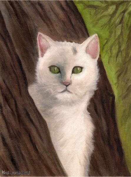 Snow-white the cat