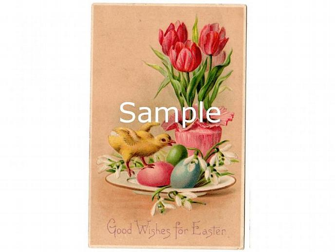 Digital Scan Antique Easter Postcard Chick Tulips Eggs