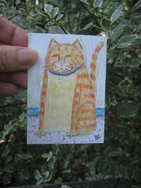 Orange tabby kitty cat named pumpkin ACEO PRINT artist trading card miniature