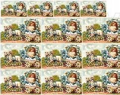 Item collection 3283635 original
