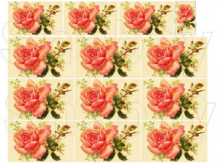 Shabby Chic Vintage  roses collage sheet for scrapbook and cards  DC409