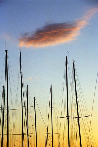Sailboat Masts are Silhouetted as the Sun Sets Fine Art Photograph Graphic