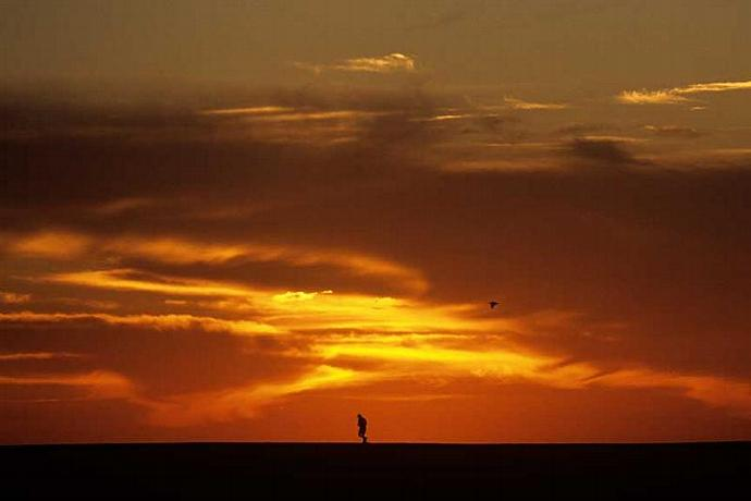 A Lone Jogger at Sun Rise Silhouetted Photo San Jose del Cabo Mexico