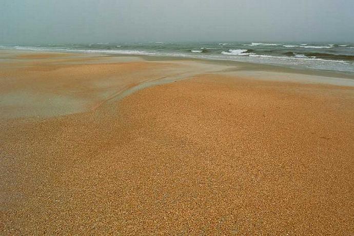 A Shell Beach on a Foggy Day Fine Art Photo