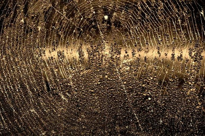 Spider Web Abstract in Sepia Fine Art Photo