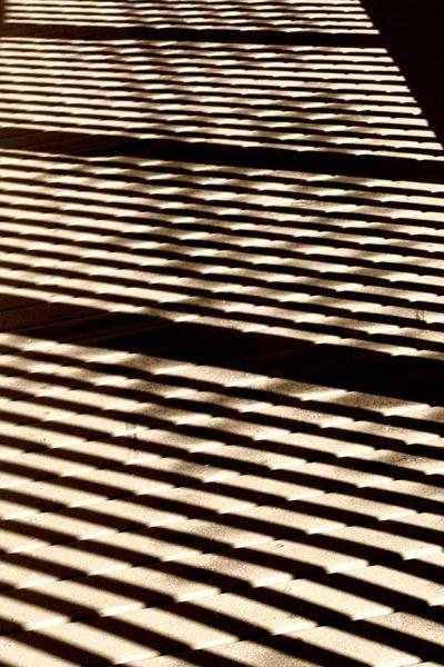 Abstract in Sepia on the Boardwalk No 2 Fine Art Photo
