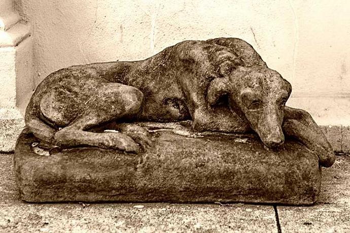 A Sculpture of a Sleeping Dog Fine Art Photo