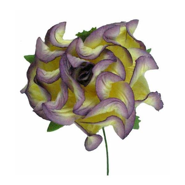 55mm Curly Rose