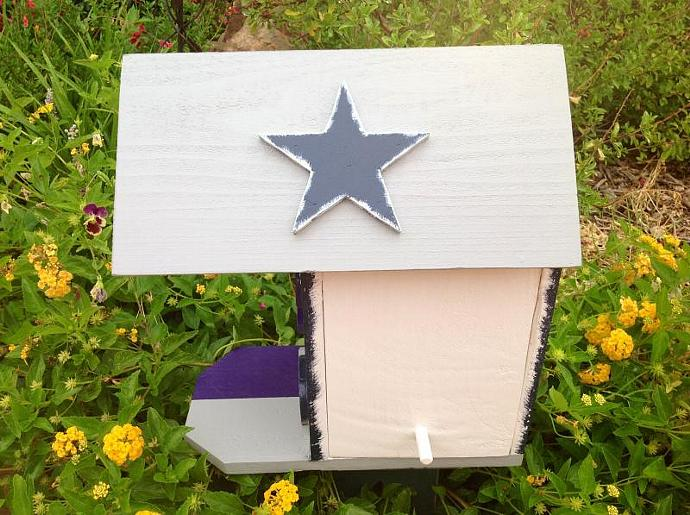 Birdhouse - Dallas Cowboys/Minnesota Vikings Birdhouse