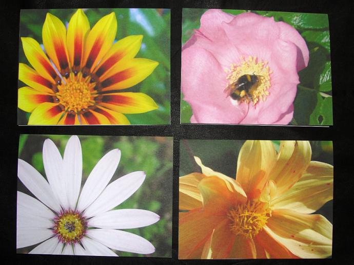 Fancy Flowers Note Card Set