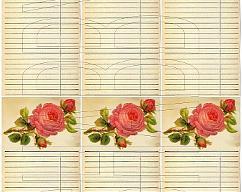Item collection 3784366 original