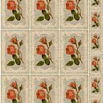 Featured item detail 3791935 original