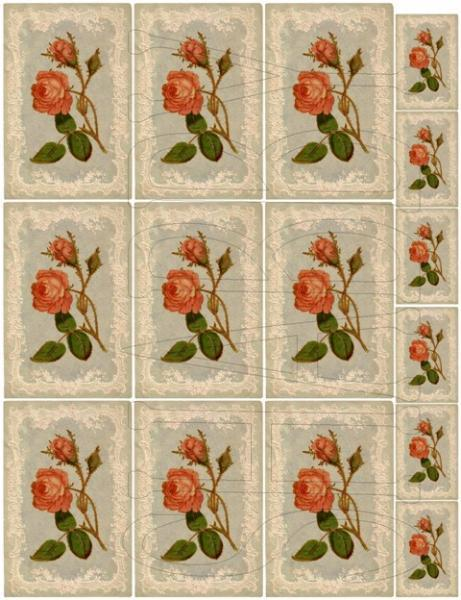 Shabby Chic Digital Collage sheet for scrapbook and cards  DC718 Pink Roses