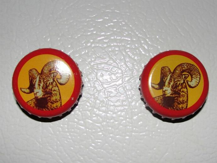 Shiner Bock Bottle Cap Magnet Set