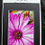 Floral Photo all occassion Greeting card and gift