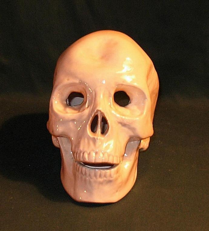 Realistic Human Skull