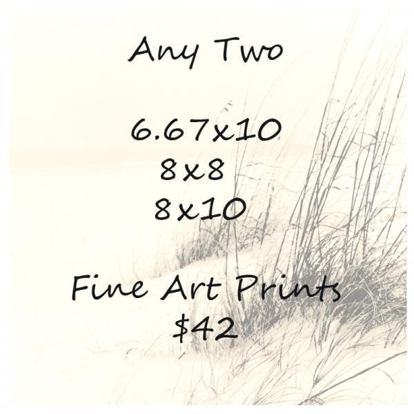 Any Two 8x8, 8x10 or 6.67x10 Fine Art Prints $42