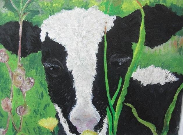 Original Cow Painting, Little Welsh Heffer, Acrylics on Paper, OOAK