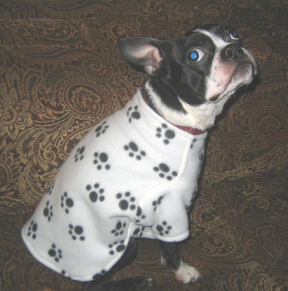Paw Print Dog Shirt Red Fleece M, L