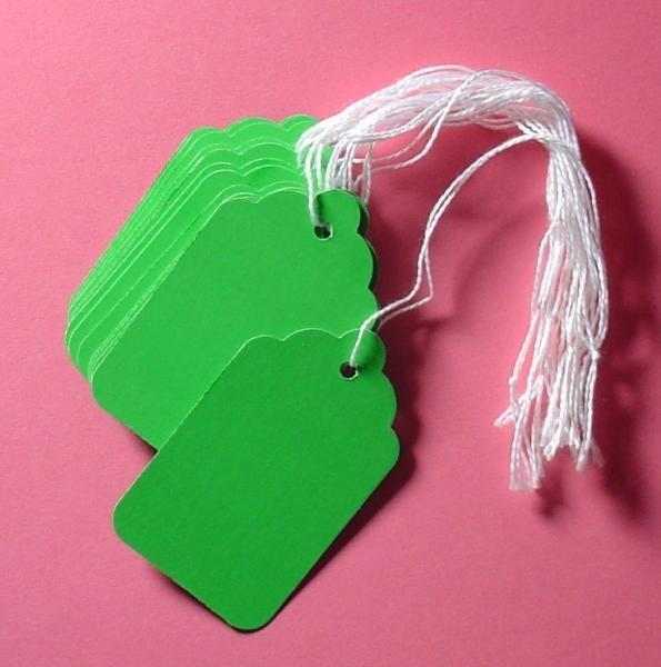 25 green paper tags with string
