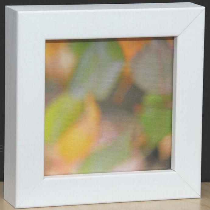 Small White Box Framed Leaf Canvas Print
