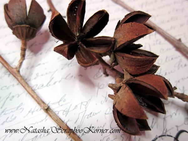 Natural Dimensional Wood Flowers
