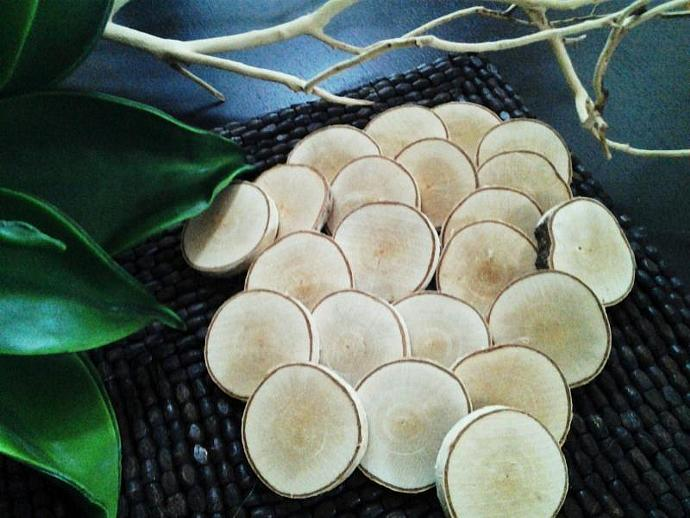 25 Natural White birch Tree slices  - discs for Crafts, DIY projects- Name tags