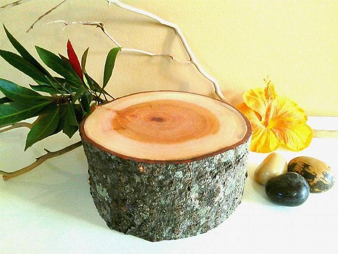 Natural Tree stump - Pedestal - Centerpiece - Holiday decor - tree slices