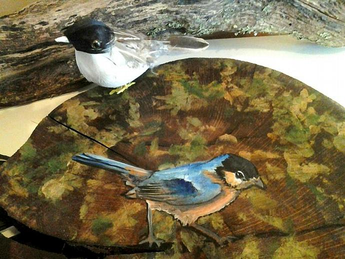 Tree slice with custom painted blue bird -Trivit - Wall hanging - Tree slices -