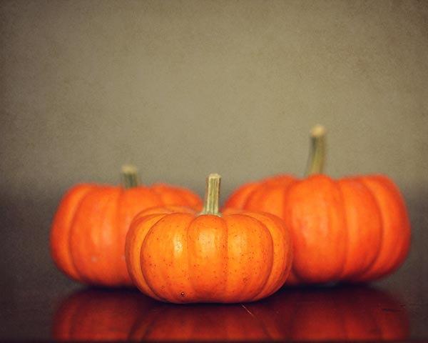 Pumpkin Photography - pumpkin fall autumn decor rustic harvest orange brown