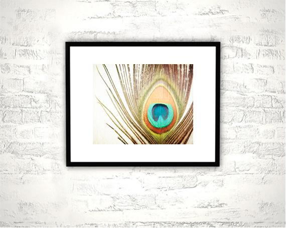 Peacock Feather Photography - 8x10 Print - Brown Teal Orange Aqua Wall Art