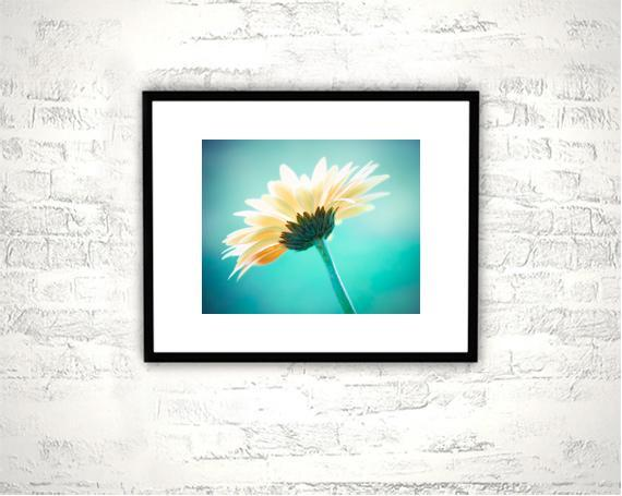 Flower Photography - 8x10 Aqua, Teal Print - Floral, Nature Wall Art