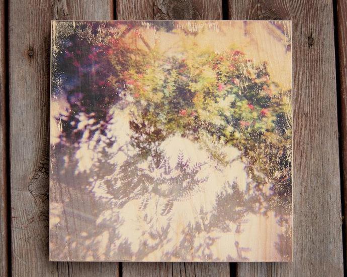 12x12 Purple Pink Green Flower Wood Photo Transfer