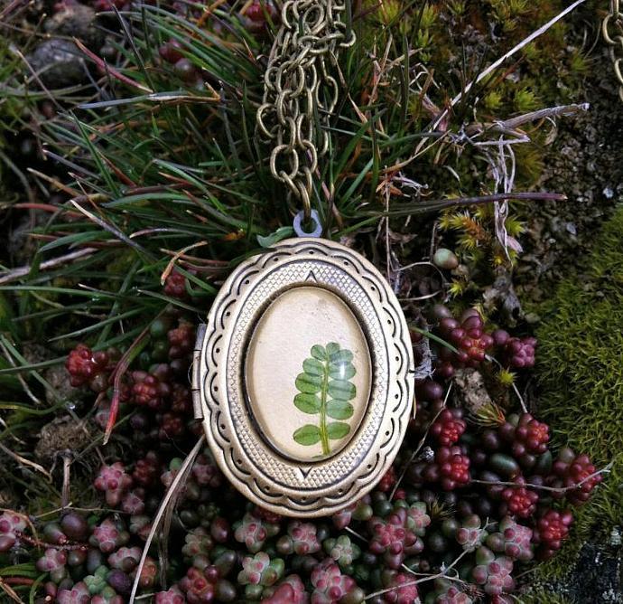 Cute locket - Pressed natural leave jewelry Locket  -  real pressed green leaf
