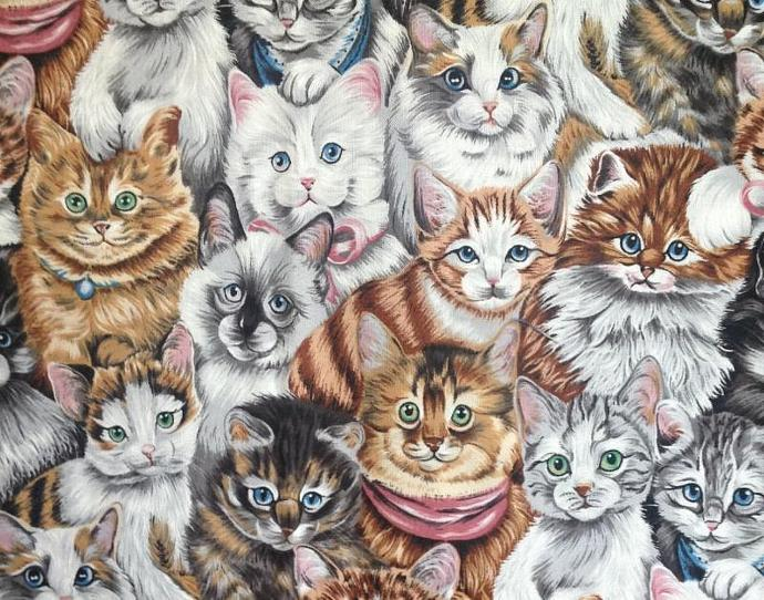 Cats, Cats,  Everywhere, White, Calico, Tuxedo - 1 yard