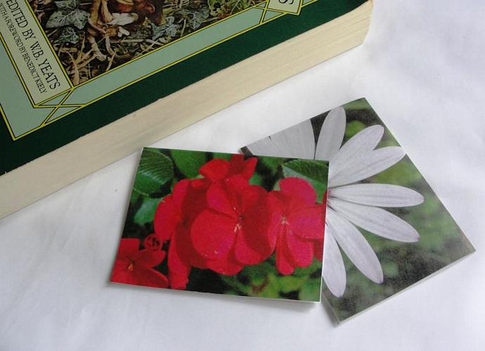 Floral Set of Magnetic Bookmarks