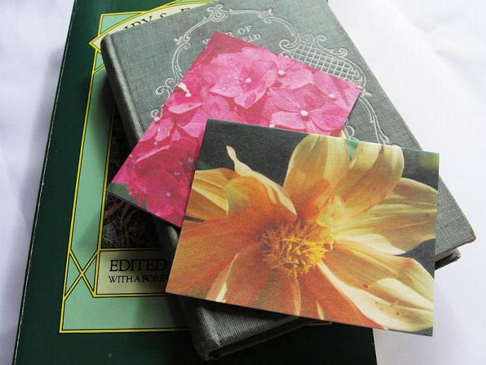 Irish Blooms  Magnetic Bookmark Set